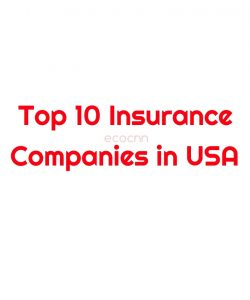 Top 10 best insurance companies in the USA 2021