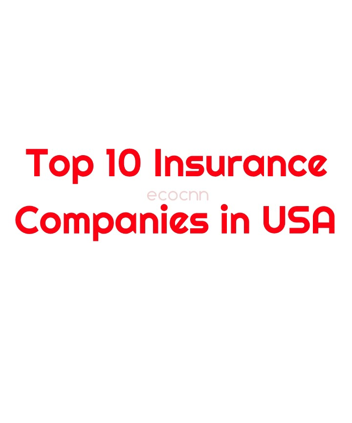 Top 10 Insurance Companies in USA 2021